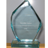 Den P&G MINT Award 2008