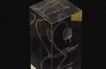 """""""Energiesparmeister""""-Wettbewerb des Bundesumweltministeriums 2010"""